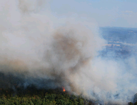 image of wildfire